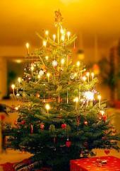 250px-Juletræet